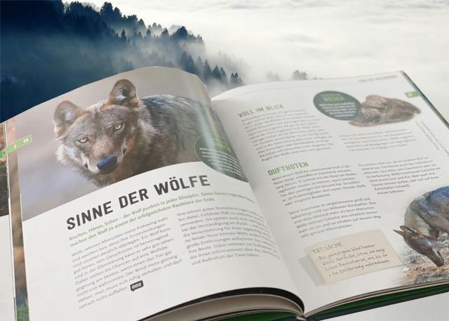 Wölfe von Axel Gomille (Innenabbildung)